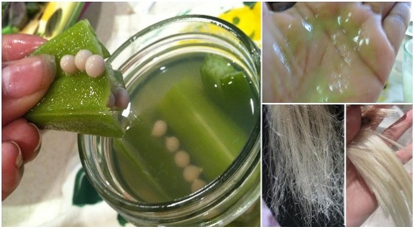 This Natural Okra Hair Conditioner Will Provide Health And Shine To Your Hair