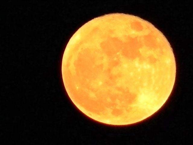 zakochany księżyc, tekst piosenki