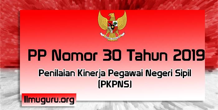 PP Nomor 30 Tahun 2019 Tentang PKPNS