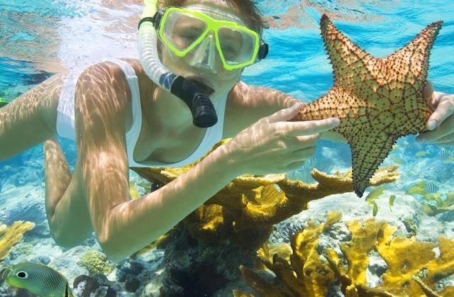 Snorkeling Wisata Pulau Tidung