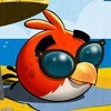 Angry Birds Rio Beach Gameplay Trailer Live On YouTubeOK - Update Angry Birds Rio