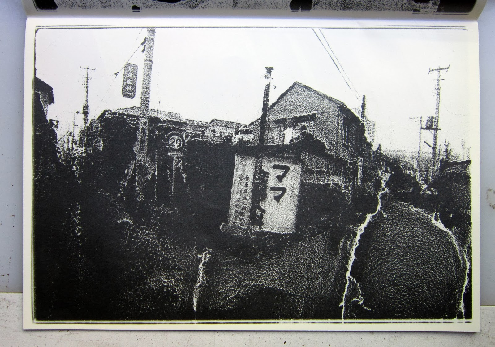 Emerging Japanese Photographer and Artist File: File 2
