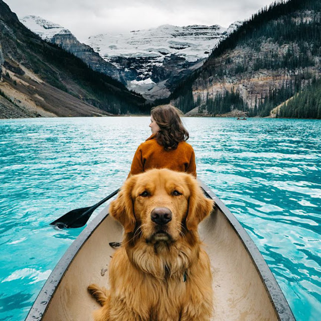 http://www.restnova.com/human-takes-his-dog-on-epic-adventures-proves-that-dogs-are-the-best-travel-buddies/