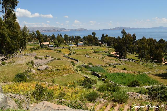 https://lecomptearebour.blogspot.com/2017/07/voyage-au-perou-amantani-lac-titicaca.html