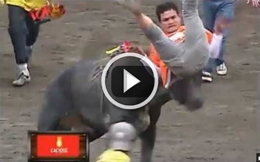 Best BULL Attacks: Funny Video Compilation - 2015 HD QUALITY