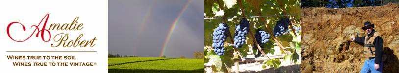 Winemaking: The Continuation of Terroir by Other Means.®