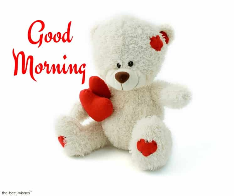 good morning with teddy bear