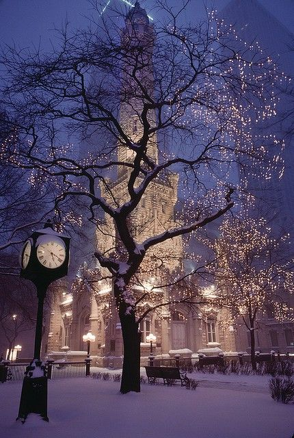 image result for Paris winter Christmas lights trees tower