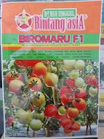 tanaman tomat buah, bibit tomat, jual benih tomat, tomat buah, lmga agro