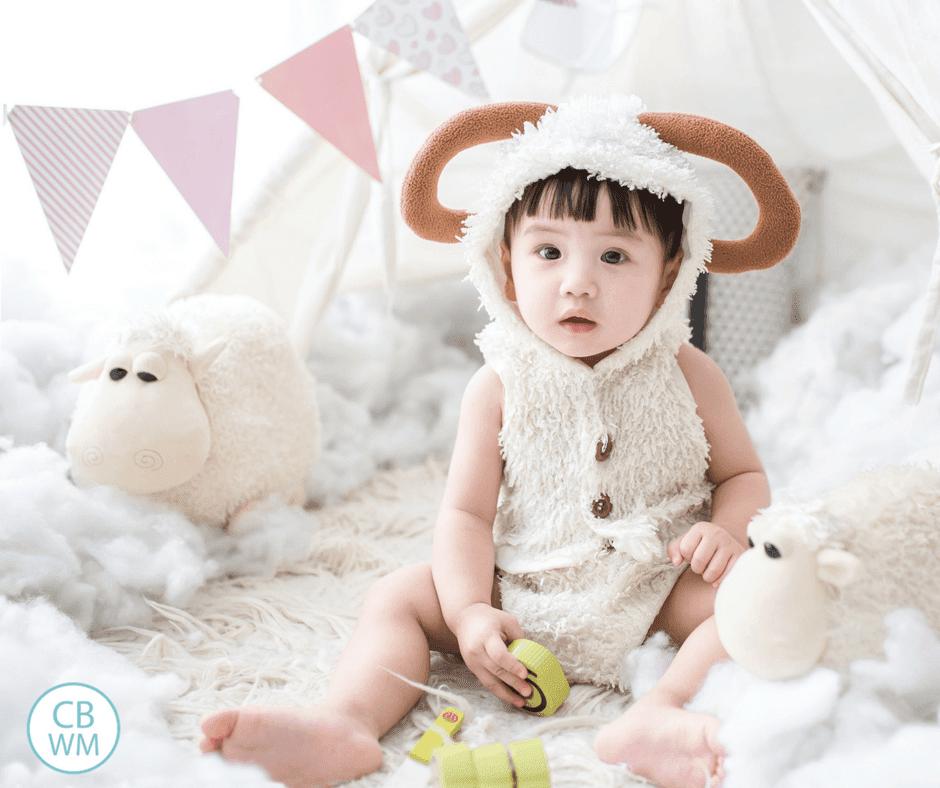 Baby Whisperer: Nursing vs. Bottlefeeding. Thoughts on the book Secrets of the Baby Whisperer on the topic of breastfeeding versus bottlefeeding.