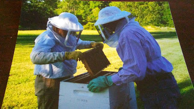 Beekeeping birthday