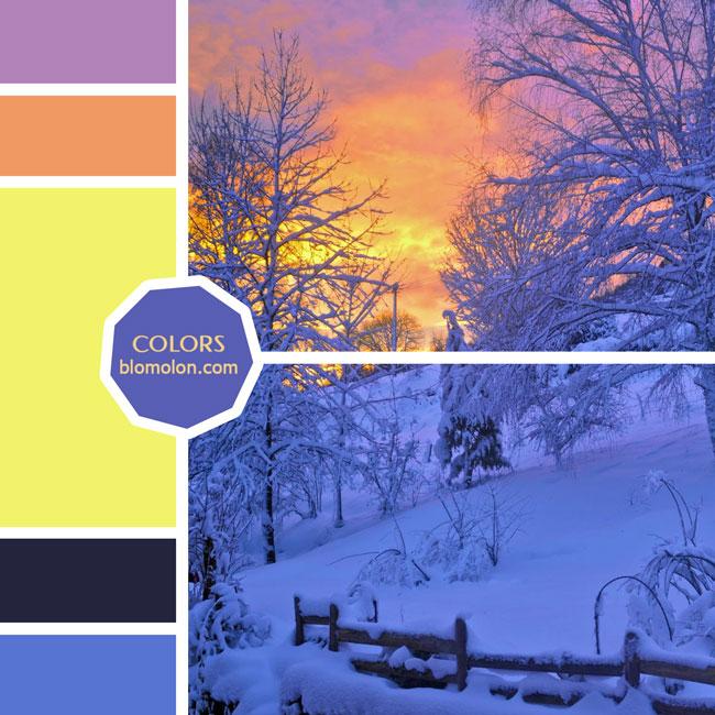 variedad_en_color_moodboard_60