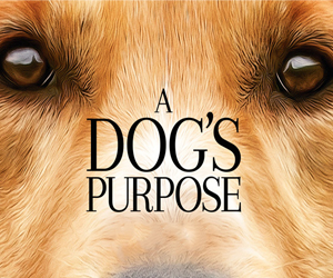 watch A Dogs Purpose The Movie online free