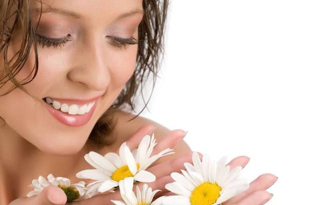 Waralaba Kecantikan dan Kesehatan via plasafranchise.com
