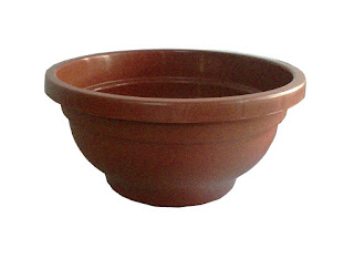 bonsai pots in ahmedabad