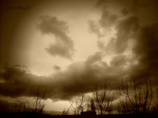 Skies, trees and clouds in december 2, 2016; edited in sepia (below)