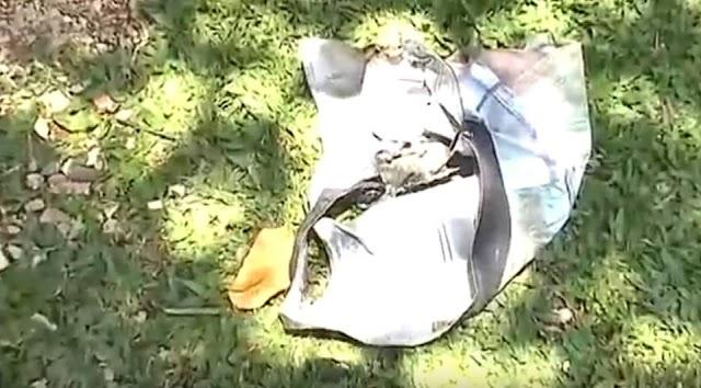 Criança de  11 anos tem 75% do corpo queimado no Guaraituba em Colombo
