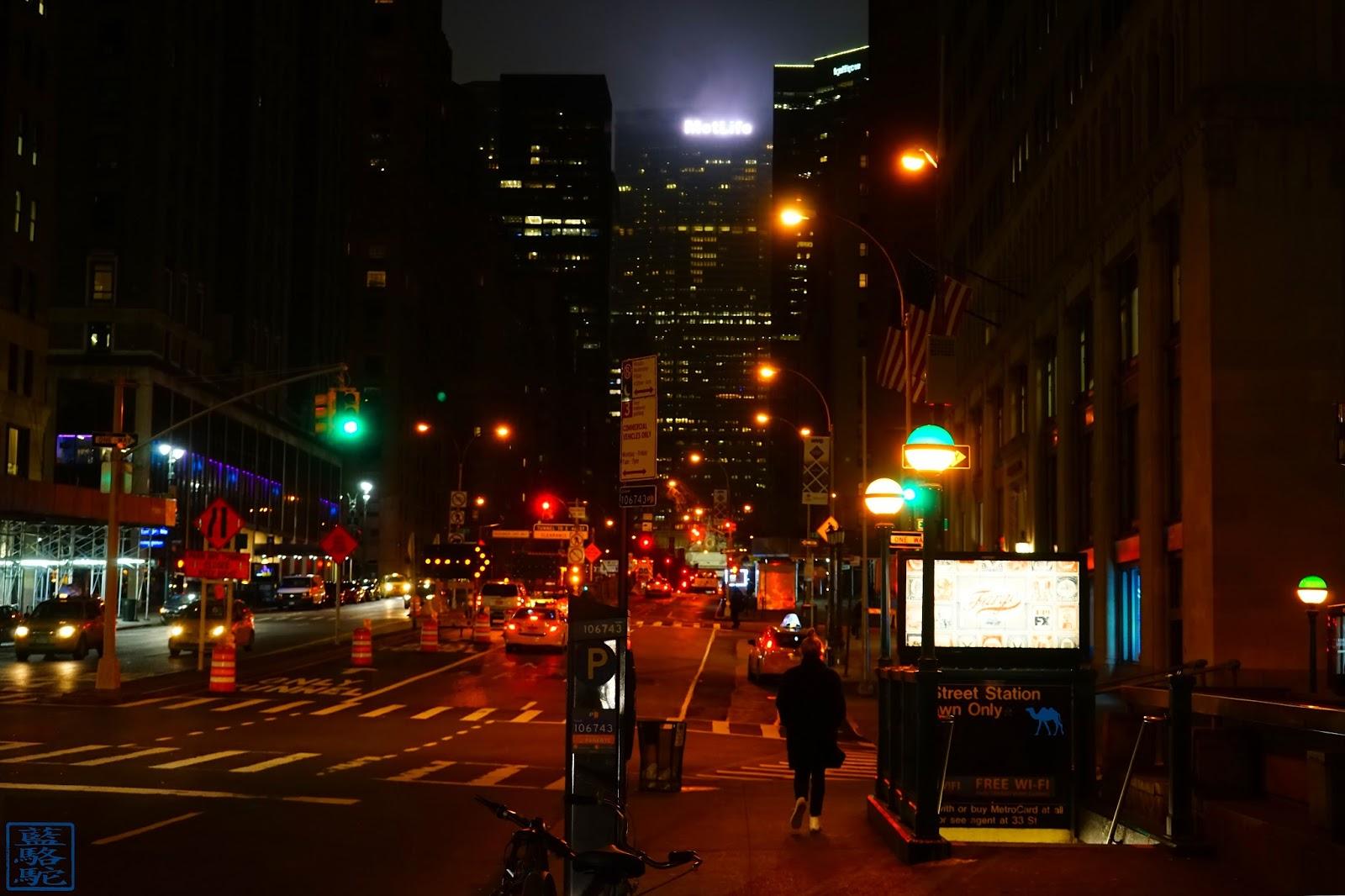 Le Chameau Bleu - Rue de Manhattan à New York  USA