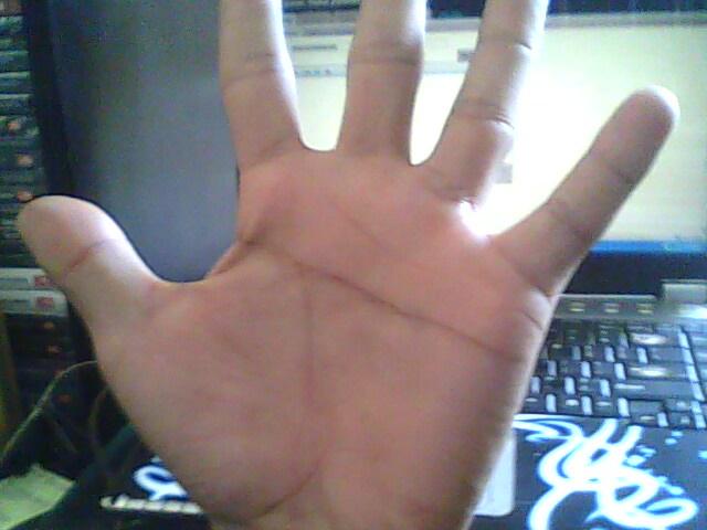 http://3.bp.blogspot.com/-MqogiofPi3o/TiJDYmizKKI/AAAAAAAAAIg/yKMSEcOqYac/s1600/simian+line+%2528+garis+kera+tangan+kiri%2529.jpg