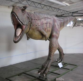 Museo de Historia Natural - UPAO