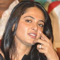 beautiful Anushka stills at greeku veerudu audio launch