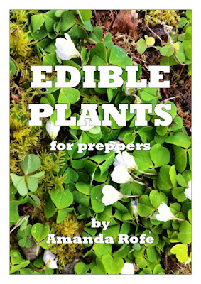 Plants for Preppers by Amanda Rofe. £2.50 Amazon Kindle.