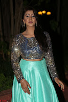 Nikki Galrani in Green Skirt  Top at Marakathamani music launch ~  Exclusive (22).JPG