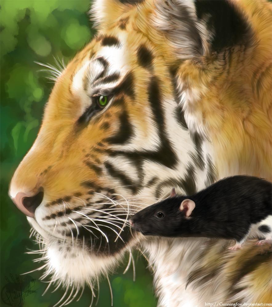 Мужчина-Тигр и женщина-Тигр: совместимость по гороскопу
