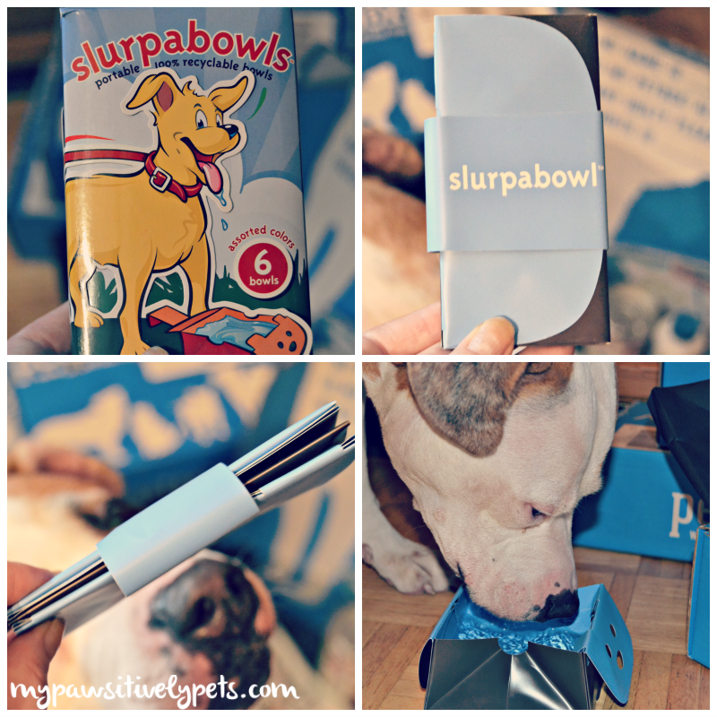 Dogs Love Petbox May Review And Giveaway Pawsitively Pets