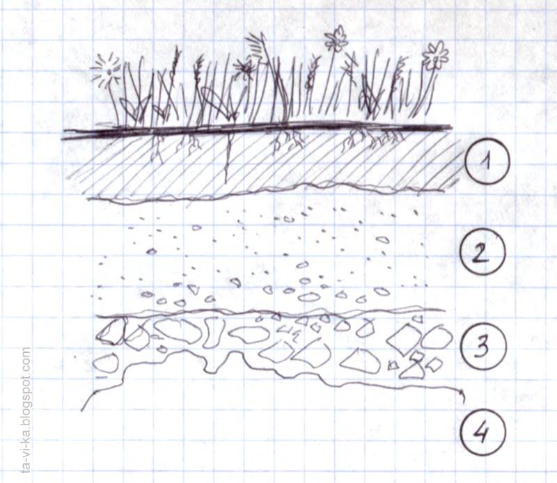 Схема строения почвы.