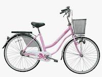 City Bike Wimcycle Mini Nexia 26 Inci