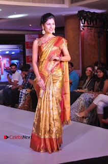 South Indian Celebrities Pos at Love For Handloom Collection Fashion Show  0082.jpg