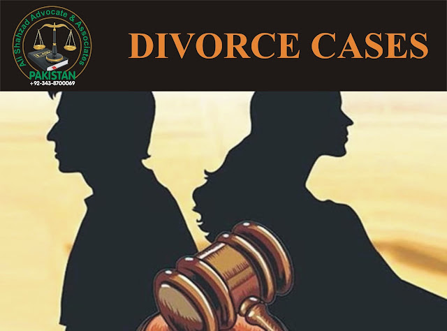 divorce lawyer. family lawyer