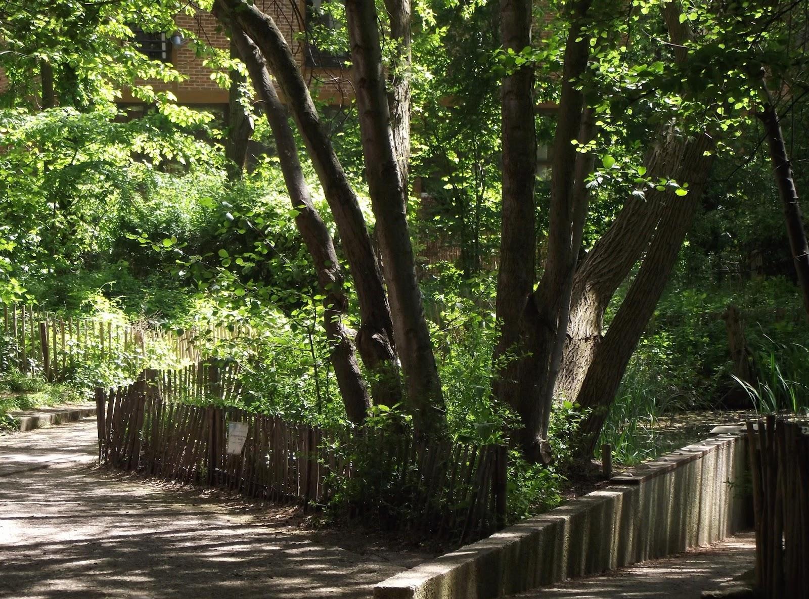 Le jardin naturel promenons nous dans les bois nalou 39 s for Le jardin naturel lespinasse