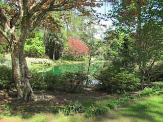 Northern Florida Gardens