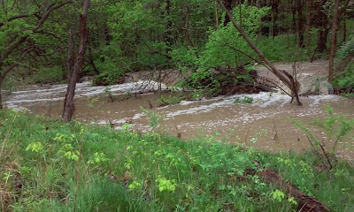 Twinsburg stream photo after a hard rain with water spilling over its banks.