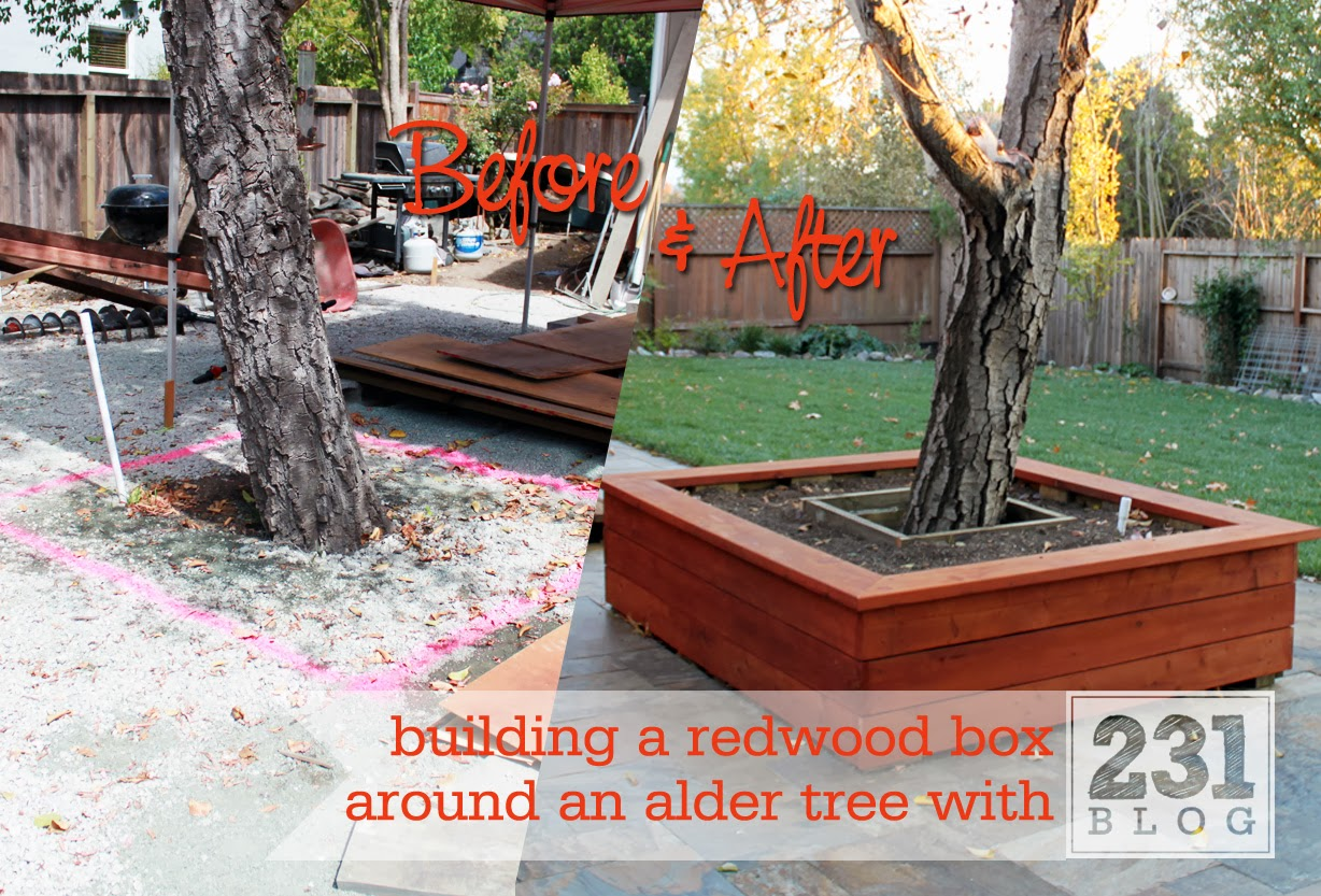 231 Designs Planter Box With Seating Around The Alder Tree Part 2 Building And Siding