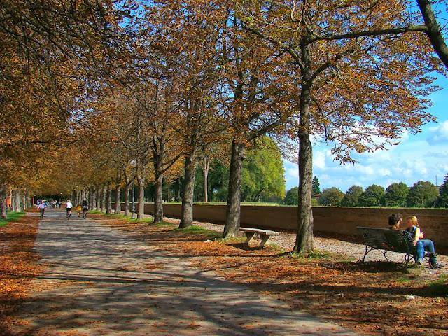 Sobre o Orto Botânico di Lucca