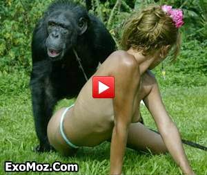 Porno girls fuck monkey commit error