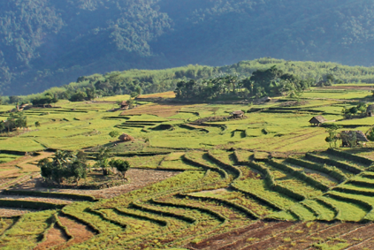 Arunachal Pradesh (Itanagar- Ziro- Hapoli- Daporijo- Along- Pasighat)