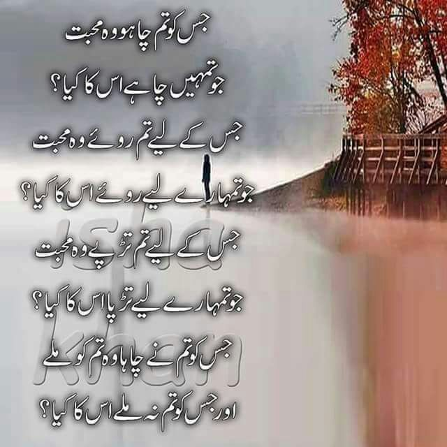 Jisko tum chaho Wo Muhabbat - Urdu Poeyru World,Urdu Poetry,Sad Poetry,Urdu Sad Poetry,Romantic poetry,Urdu Love Poetry,Poetry In Urdu,2 Lines Poetry,Iqbal Poetry,Famous Poetry,2 line Urdu poetry,  Urdu Poetry,Poetry In Urdu,Urdu Poetry Images,Urdu Poetry sms,urdu poetry love,urdu poetry sad,urdu poetry download