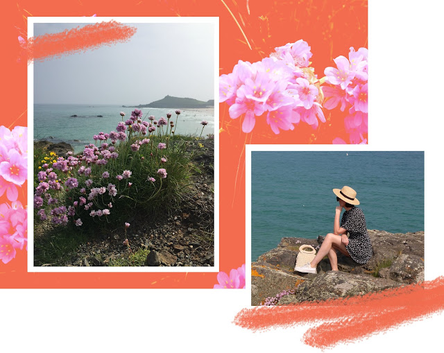 Wild Cornish Flowers and Sea Views in St.Ives