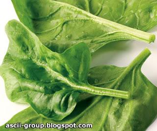 فوائد السبانخ لمرضى السكري والقلب Benefits of Spinach