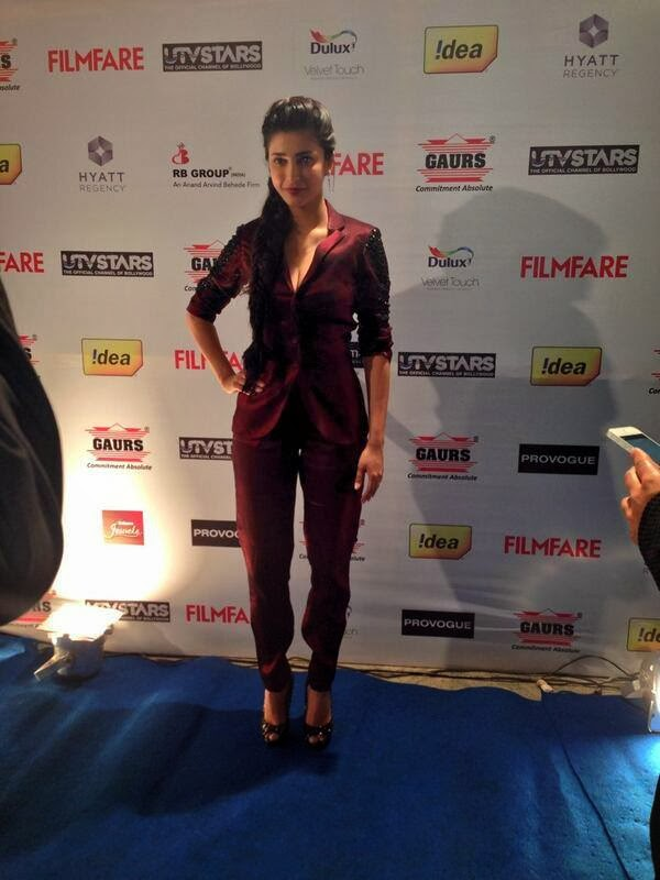 Stunning celbs at 59th Idea Filmfare Awards 2013 Pre-Awards party