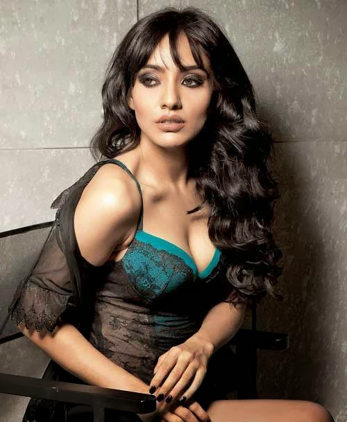 Bollywood Spicy Actress Latest Hot Photos Gallery