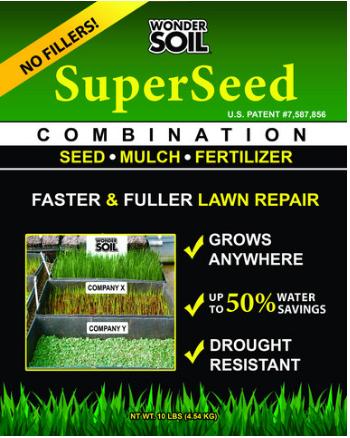 fescue germination times