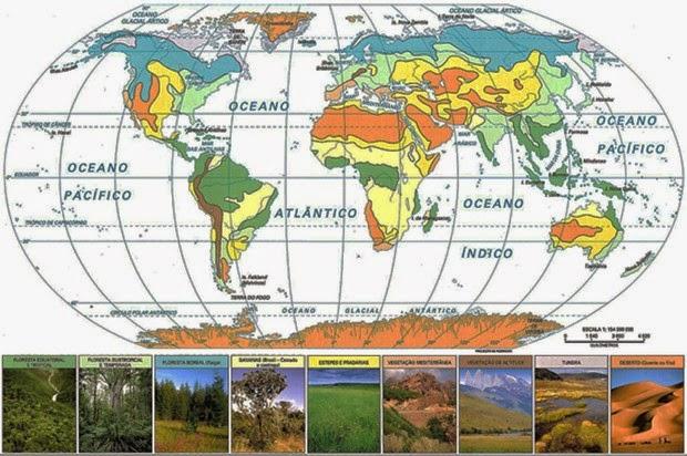 Mapa Fitogeográfico do Planeta