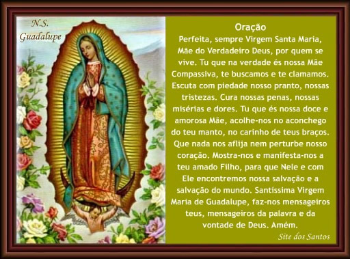 Festas Marianas Do Mês De Outubro Nossa Senhora Do: CRISTO Minha CERTEZA: IMAGENS DE NOSSA SENHORA DE GUADALUPE