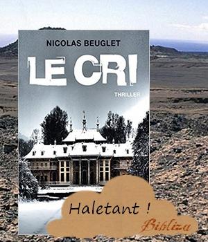 le cri Nicolas Beuglet XO thriller âme club des 5 6 compagnons Oslo avis critique chronique coup de coeur blog