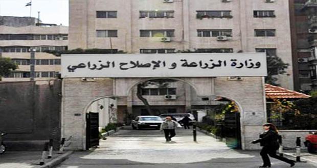 وزارة الزراعة تطرح 270 طن من السلع والمنتجات الغذائية باسعار تنافسية خلال شهر رمضان